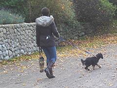 Ängelholm / Suède - Sweden  - 23-10-2008 -  Version éclaircie