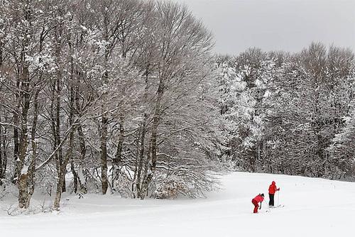 ski-de-fond-IMG 7878-DXO6raw