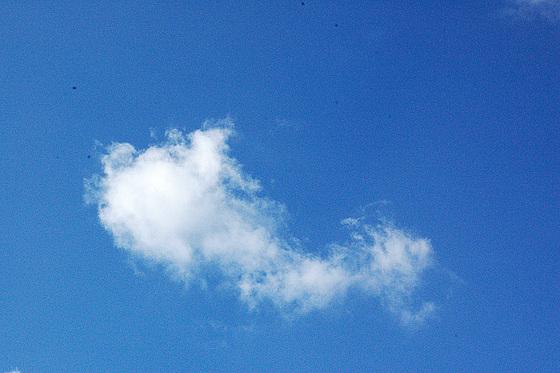 sola nubo