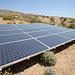 Solar Panels at Cabot's (6804)