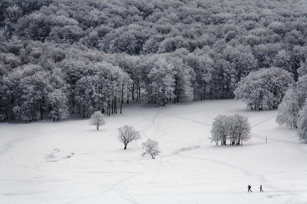 aubrac-neige-raquettes-IMG 7895-DXO6raw
