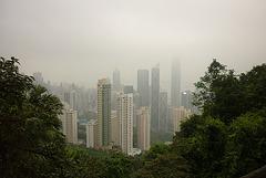 Green and concrete jungle