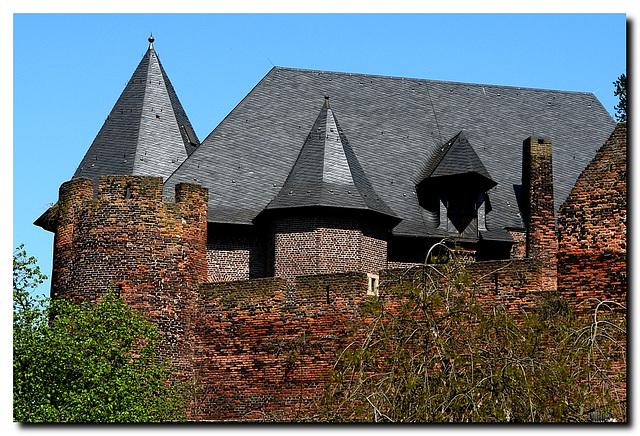 Burg Linn, Zinnen