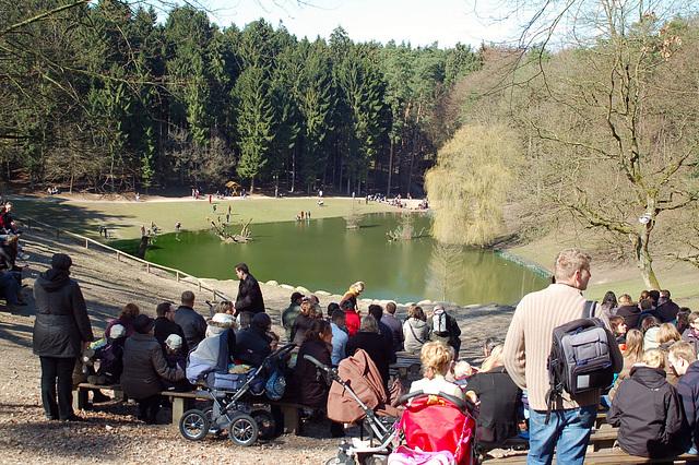 Tierpark Schwarze Berge  026