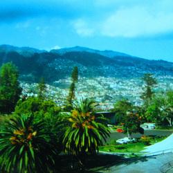 Madeira Island (3)