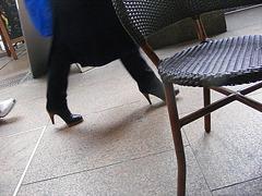 Bottes à talons hauts sur Toulouse  - Photo Krisontème.