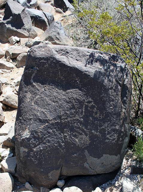 Three Rivers Petroglyphs (5827)