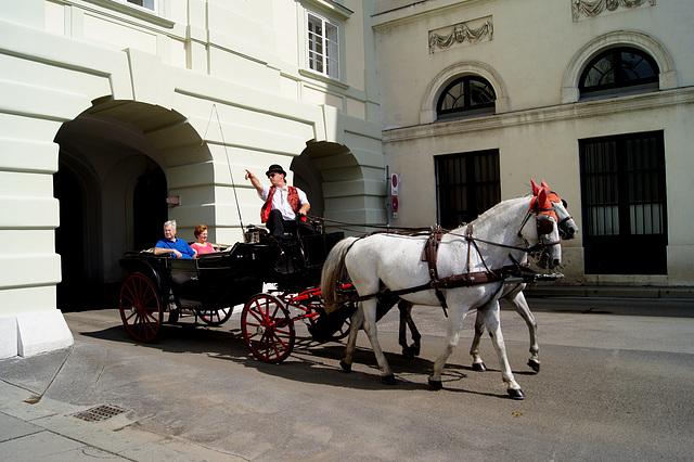 les cochers de Vienne