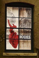 Bodies__*J*********