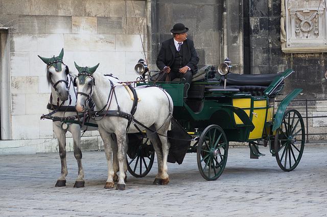 les cochers à Vienne