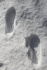 On a marché sur la neige