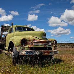green truck in green fields
