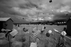 recontres de cerf volants, berck 2009