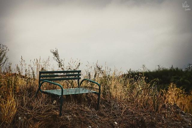 The long wait | La larga espera