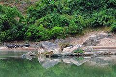 Beautiful landscape at the Nam Ou riverside