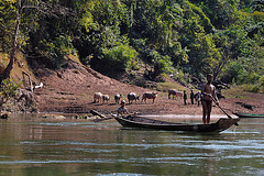 Life scenes on the Nam Ou river