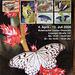 Papilioj - la flugantaj briliantoj / Schmetterlinge - die fliegenden Edelsteine