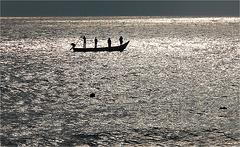 naître pêcheur à PUDUCHERRY 2