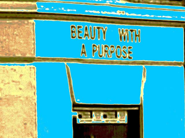 Beauty with a purpose /  Beauté avec un but - Copenhague / Copenhagen.  20-10-2008- Bleu photofiltré + postérisation