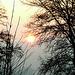 Sonnenaufgang bei -15°C am 27.Januar 2010