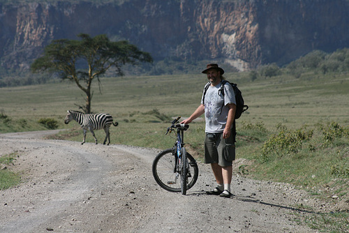 Zebra Crossing – Ha Ha!