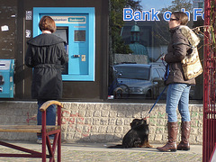 Handlesbanken booted swedish Lady with her dog /  La Dame bottée Handlesbanken avec son petit chien mignon.