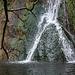 Darwin Falls (5099)