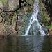 Darwin Falls (5100)