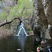 Darwin Falls (5103)