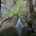 Darwin Falls (5104)