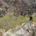 Hike To Darwin Falls (5090)