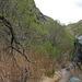 Hike To Darwin Falls (5094)