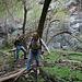 Hike To Darwin Falls (5102)