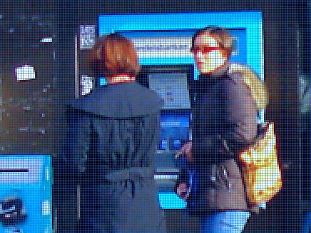 Handlesbanken booted swedish Lady with her dog /  La Dame bottée Handlesbanken avec son petit chien mignon - Mosaïque photofiltrée