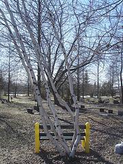 Cimetière pour animaux / Pet cemetery  - Mon Repos