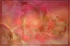 """Come Tenderness"" par Lisa Gerrard"
