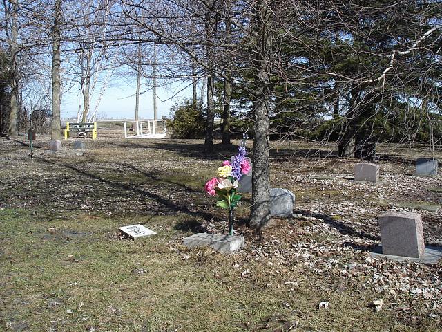 Cimetière pour animaux  /  Pet cemetery  - Mon Repos /   Dans ma région - in my area.  Québec, Canada /    16 mars 2010 - Photo originale / Original picture