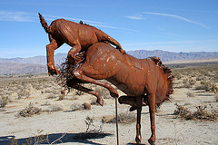 Galleta Meadows Estates Cat on Horse Sculpture (3643)