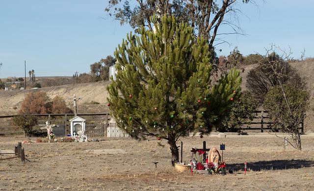 San Lucas cemetery (0961)