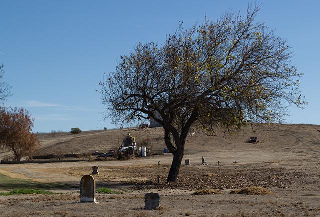 San Lucas cemetery (0958)