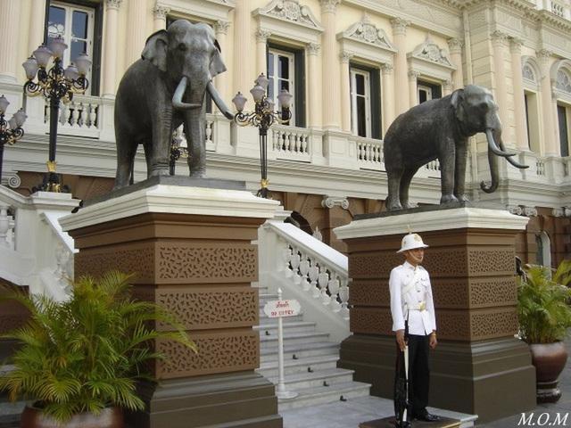 Devant le palais royal