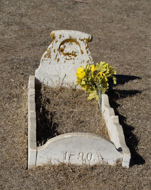 San Lucas cemetery (0970)