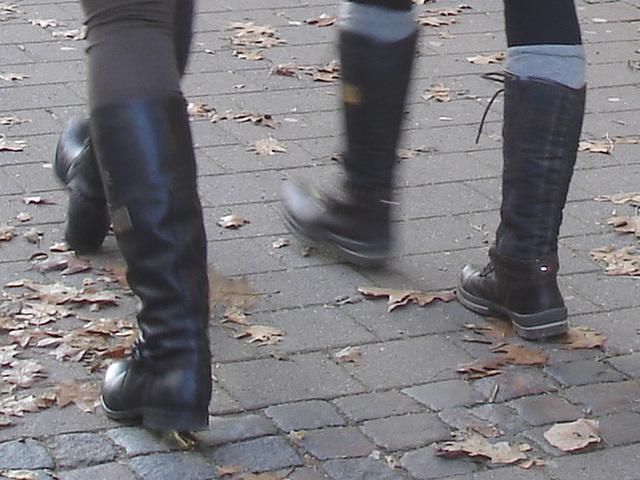 Déesses suédoises / MQ Swedish Booties walking on autumn leaves /    Ängelholm / Suède - Sweden.  23 octobre 2008