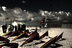 rencontres de cerf volants de berck plage