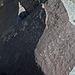 Three Rivers Petroglyphs (5834)