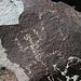 Three Rivers Petroglyphs (5843)