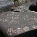 Three Rivers Petroglyphs (5846)