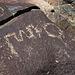 Three Rivers Petroglyphs (5855)