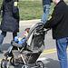 118.March1.MarchOnThePentagon.MemorialDrive.VA.21March2009