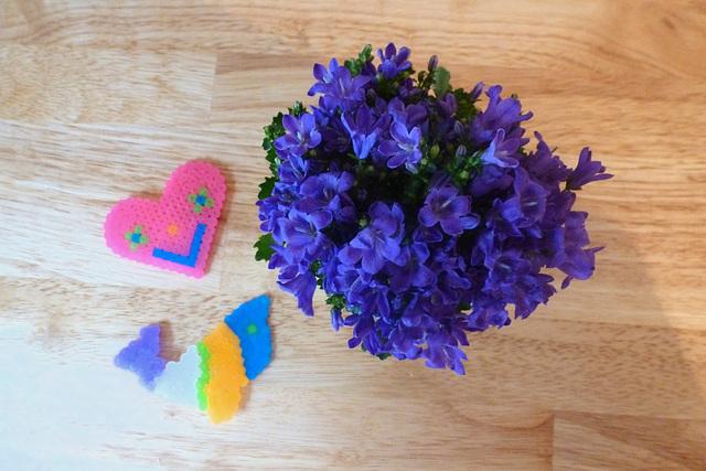Herz - Fisch - Blume - koro - fiŝo - floro